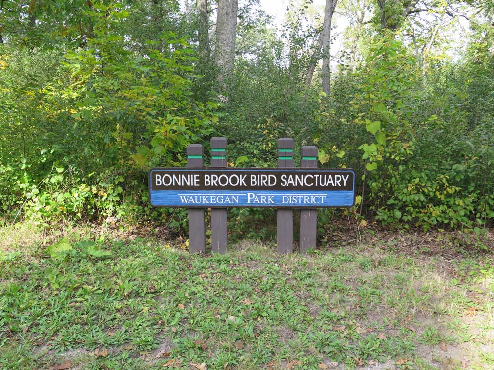 Bonnie Brook Bird Sanctuary