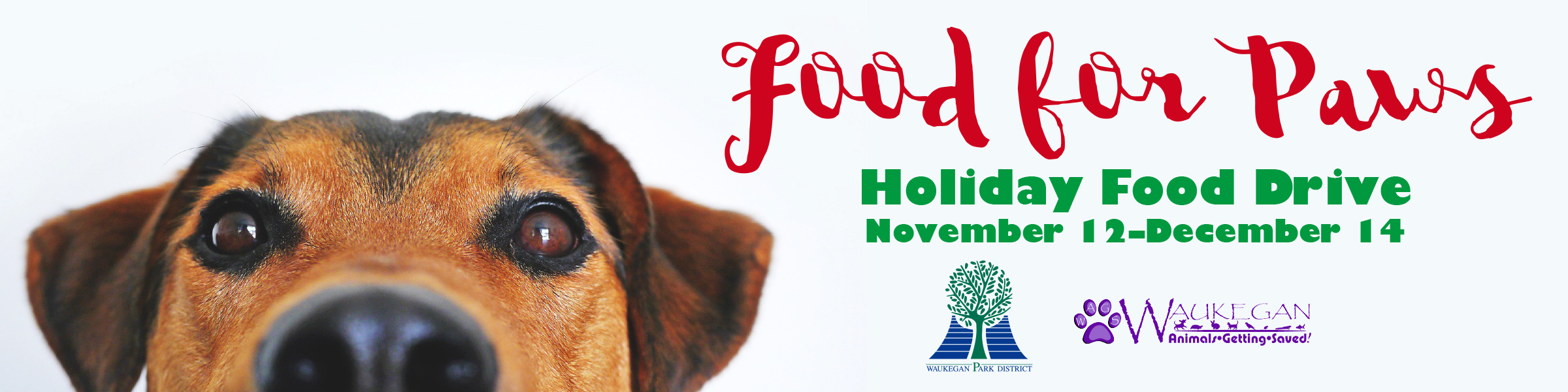 Food for Paws Banners